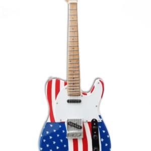 Bruce Springsteen America